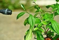 Agro Chemicals in  Sarkhej