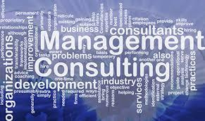 It Management Consulting Service