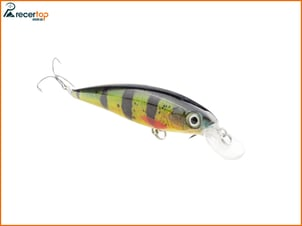 Hard Bait Fishing Minnow with lures