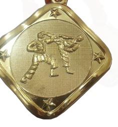Karate Gold Medal