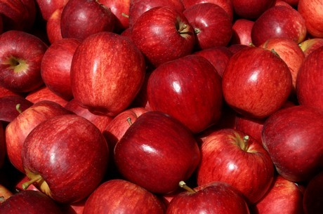 Red Delicious Royal Apple