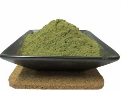 Eucalyptus Powder in  Asarwa