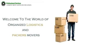 Professional Packers And Movers Service
