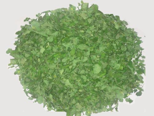 Moringa Leaves in  Wadala (E)