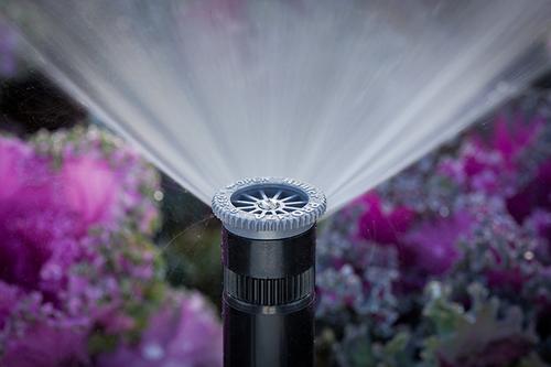 Advanced Sprinkler Systems