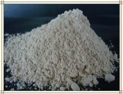 Hydrolysed Rice Protein in  Anna Nagar (East & West ) Avenue