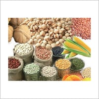 Packaged Agro Products