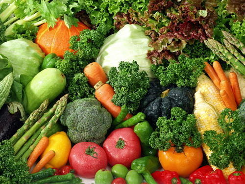 Top Quality Organic Vegetables