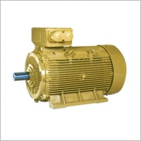 TEFC Squirrel Cage Induction Motor