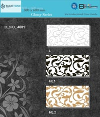 Printed Digital Ceramic Wall Tiles