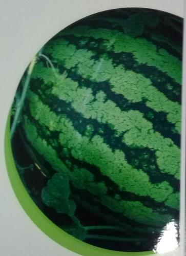 Watermelon In Bengaluru, Watermelon Dealers & Traders In