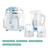 250W Small Food Processor Blender and Extractor