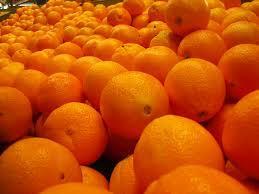 Sweet Fresh Valencia And Navel Fresh Oranges
