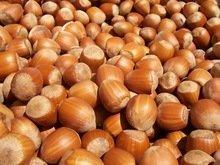 Cashew Nut Kernels in   Sarapee