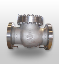 Industrial Use Check Valves