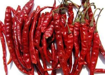 Teja Dry Red Chilli in Guntur, Andhra Pradesh - LARA EXPORTS COMPANY