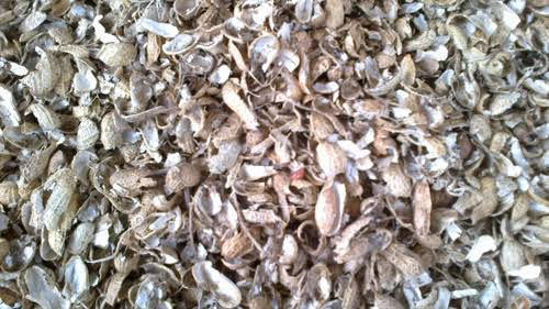 High Grade Groundnut Shell