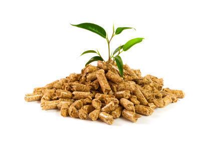Top Quality Biomass Wood Pellet