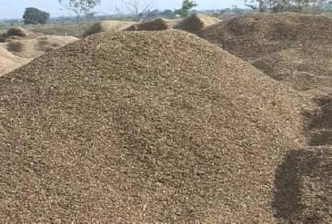 Top Quality Groundnut Shell Powder