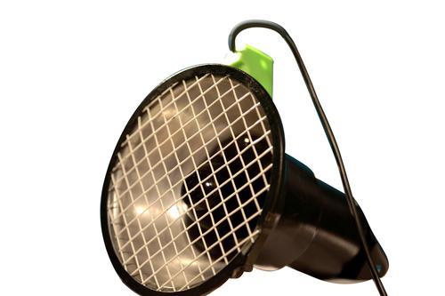 Ultravoilet Light Type100e