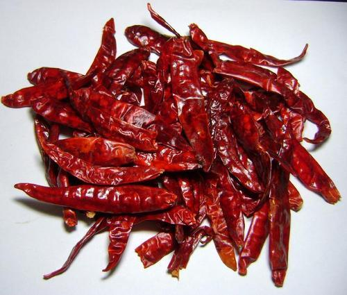 Red Chilli in  Katol Road