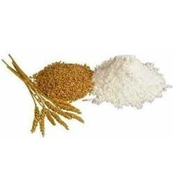 Sprouted Wheat Flours