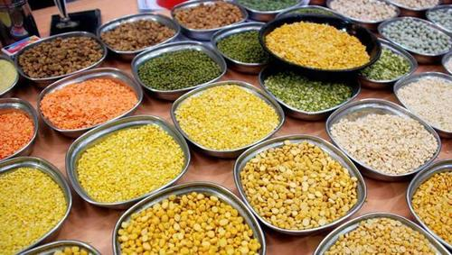 Pulses In Salem, Pulses Dealers & Traders In Salem, Tamil Nadu