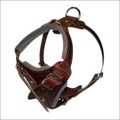 Durable Leather Dog Harness