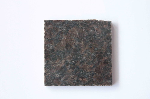 Indian Coffee Brown Granite Slabs in   Lam Tin