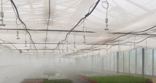Misting Irrigation System