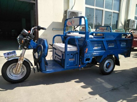 Electric Tricycle (Silver Dragon II)