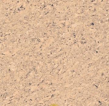 Graphica Almond Tiles