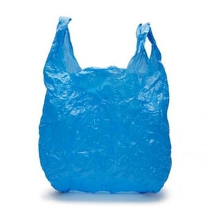 Plastic Carry Bag Printings Services