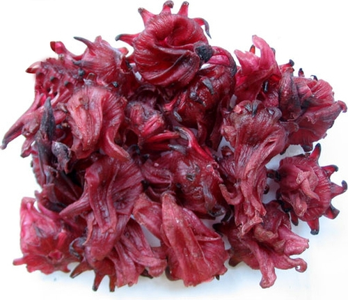 Dried Hibiscus Plant Flower