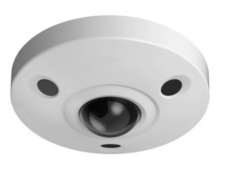Fish Eye IP Cameras