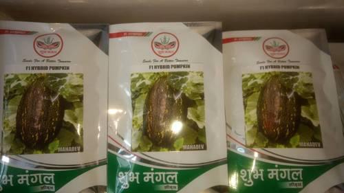 Hybrid Pumpkin Seeds in  Indra Market