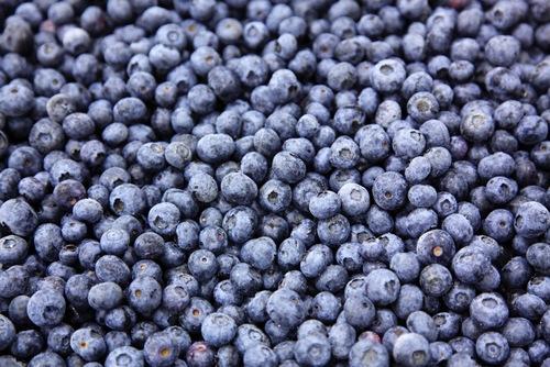 Frozen Blueberries in Ghaziabad, Uttar Pradesh, India