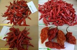 Pure Dry Red Pepper