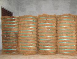 Coir Fibre Bales