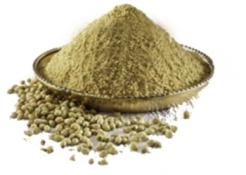 Coriander Powder in  Bopal