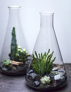 Laboratory Conical Flasks
