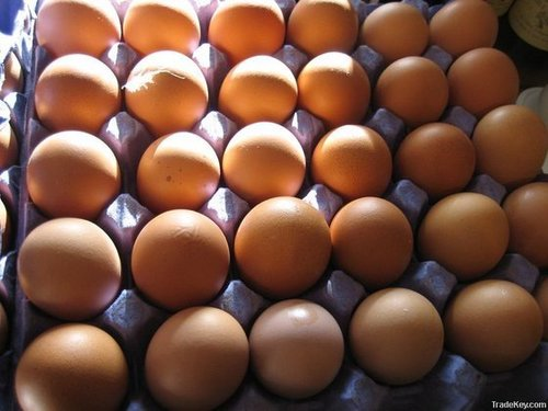 Brown And White Table Eggs