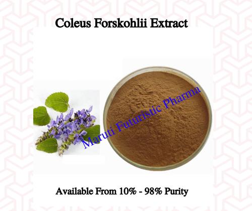 Coleus Forshohlii Extract