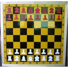 Chess Training Magnetic Demonstration Boards