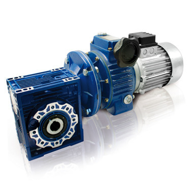 Motovariator Worm Gear Reducer - Cast Iron Series