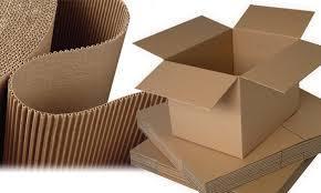 Corrugated Packaging Boxes in   Chandresh Nagar Main Road