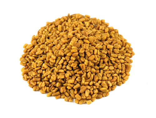 Fresh Fenugreek