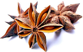 Pure Star Anise in  Thiruvothiyur