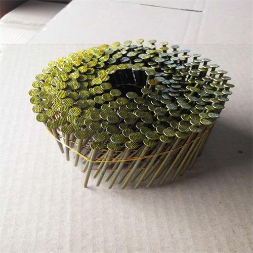 2.5mm*70mm Coil Nails in  Northern Of Xusheng Road