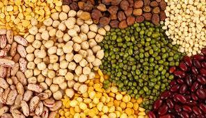 Indian Pulses in  Sector-19-Vashi